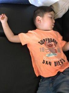 2016-08-04 Sylvain vlat met eten in zijn hand in slaap