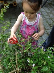 tuin-werk01